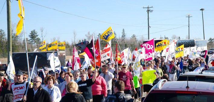 Fight for fairness at New Brunswick's Covered Bridge Potato Chips